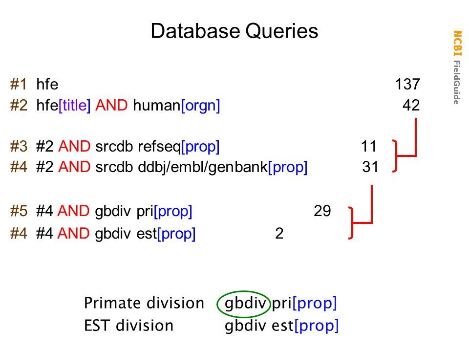 Database Queries #1 hfe 137 #2 hfe[title] AND human[orgn] 42